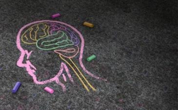 cabeza-cerebro-pintada-tiza
